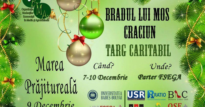 targ caritabil bradul lui mos craciun FSEGA Cluj SEMA