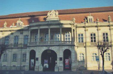 vizitatori muzee cluj