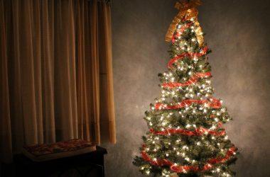 brazi de Crăciun