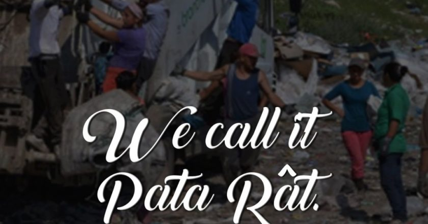 experience pata rat