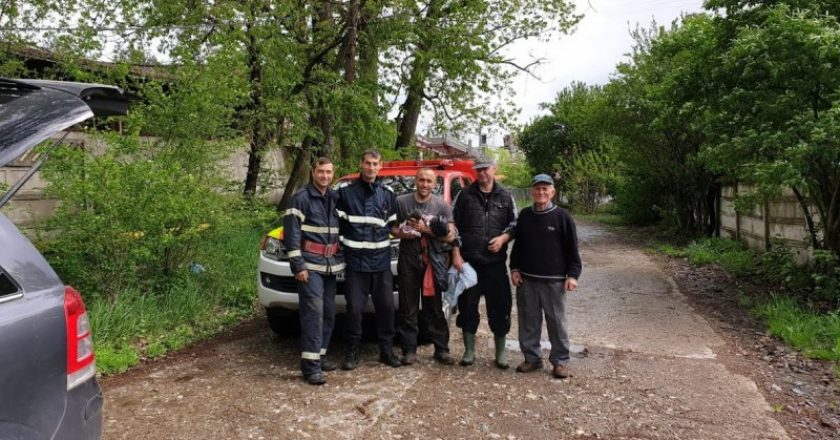Șapte căței au fost salvați dintr-un canal de către pompierii clujeni