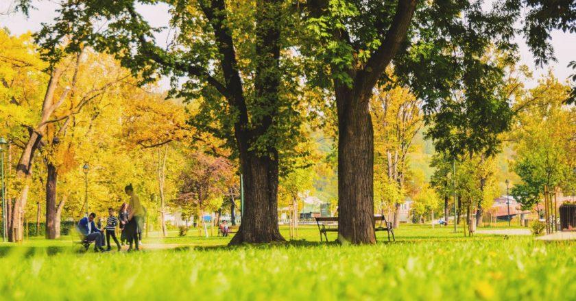 Pădurea Clujenilor - un nou parc în Cluj