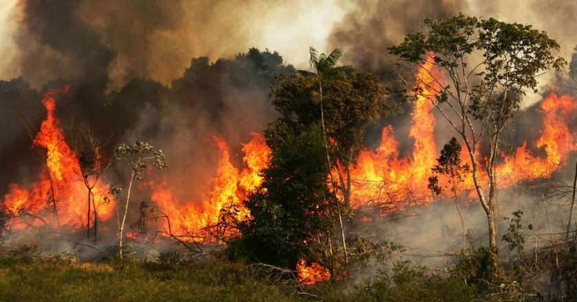 Dezastru climatic | Record de incendii în Pădurea Amazoniană