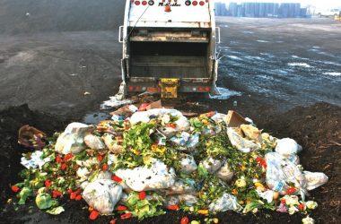 Mâncarea aruncată într-un an în România ar putea hrăni timp de 20 de ani populaţia Clujului