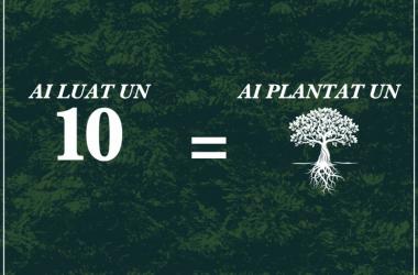 Campanie inedită la o facultate din Cluj: pentru fiecare 10 din sesiune va fi plantat un copac