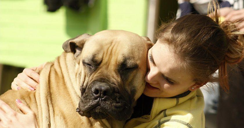 Ziua Interacțiunii Om-Animal la Cluj