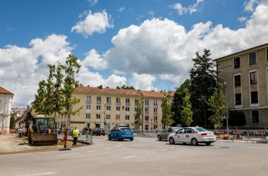 """Se plantează arbori în Piața """"Lucian Blaga"""" din Cluj-Napoca"""