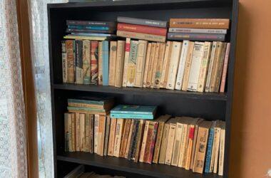 Biblioteca din scara blocului - modul inedit prin care un scriitor din Cluj încurajează cititul