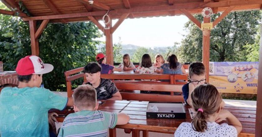 Mind Generation – cursuri şi tabere deosebite în această vară: în natură, la sediul firmei sau online