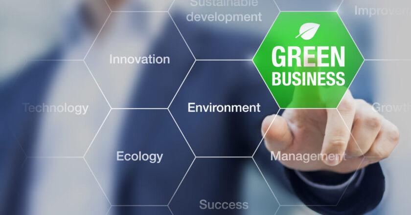 Vrei sa iti deschizi o companie a carei activitate are impact asupra mediului? Iata ce trebuie sa stii