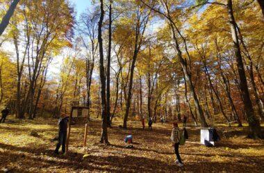 Traseul Veveriţei - potecă tematică amenajată în Pădurea Făget
